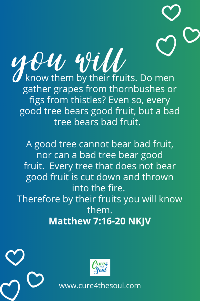 You'll recognize them by their fruit. Are grapes gathered from thornbushes or figs from thistles? 17 In the same way, every good tree produces good fruit, but a bad tree produces bad fruit. Matthew 7:16-20