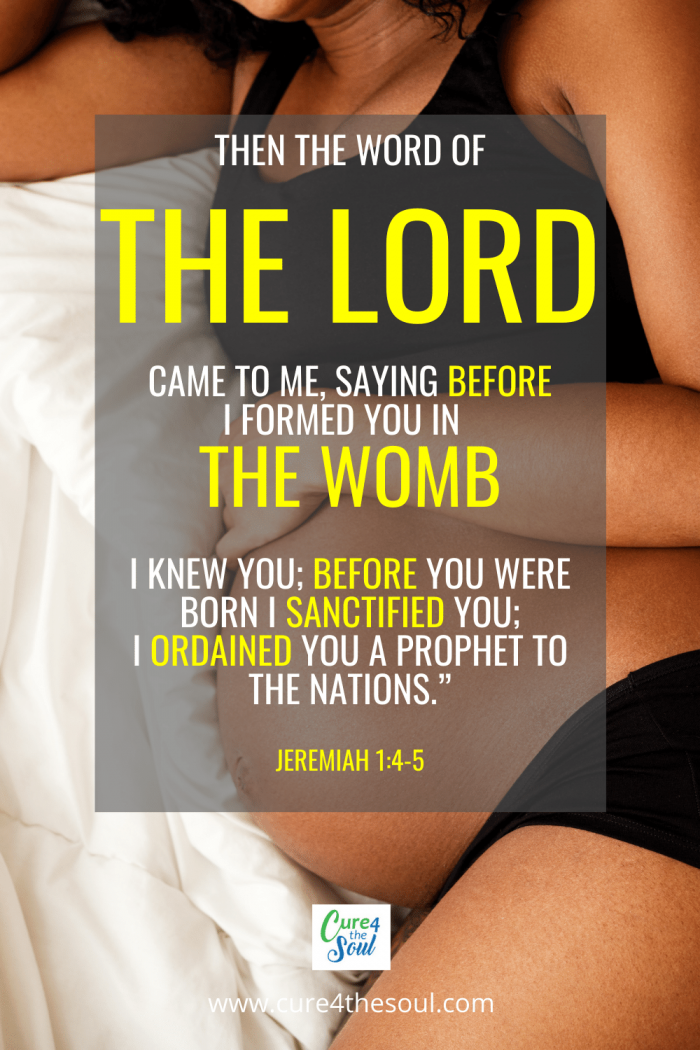 There are many professing Christians that are not pro-life, they support abortion and their free will when it comes to their bodies. Let's explore what the Bible has to say about the value of life in the womb. #democrats #liberal #conservative #jeremiah